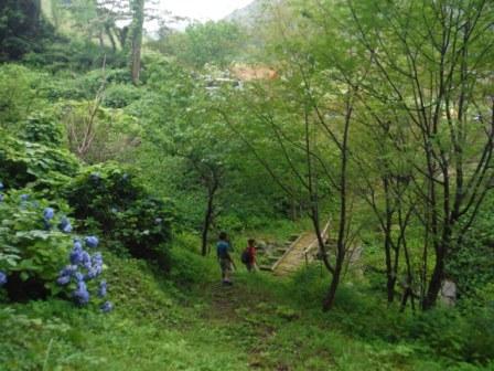1揖斐高原キャンプ4