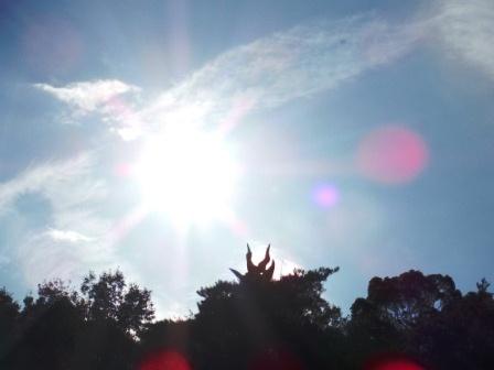 0モンキーパーク若い太陽の塔追記28
