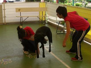 トレーニング③