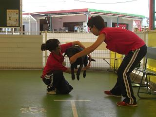 トレーニング⑤