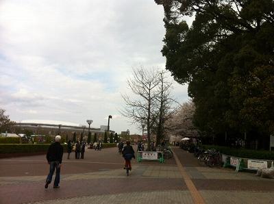 写真.JPG111