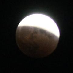 moon1901.jpg