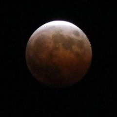 moon1921.jpg