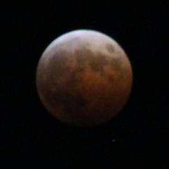 moon1931.jpg