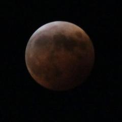 moon1953.jpg