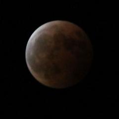 moon2020.jpg