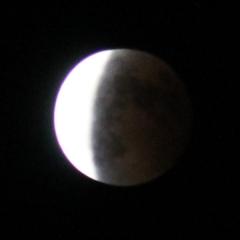 moon2046.jpg