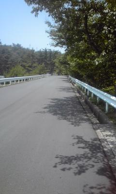 キジ横断エリア1