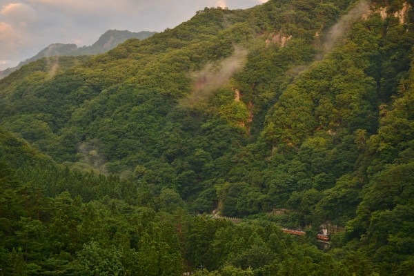 2014年8月23日 JR東日本吾妻線 川原湯温泉~岩島 115系