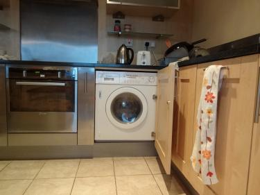 Kitchen-washing machine