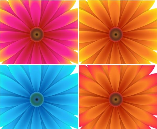 美しい花ビラをアップにしたクリップアート beautiful flowers background