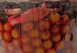DSC_0121紫蘇梅ミョウガ