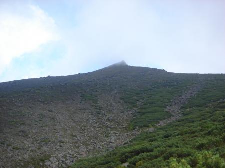 ハイマツと雨でスリッピーな登山道途中から振り向くと美瑛岳山頂