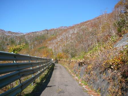 山頂まで続く舗装道路