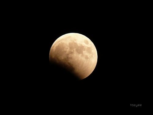20141008 皆既月食報告2