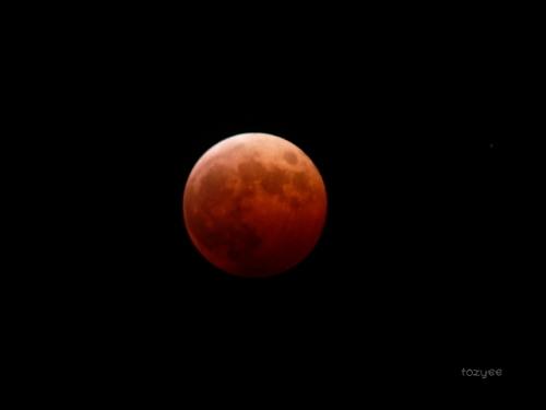 20141008 皆既月食報告9
