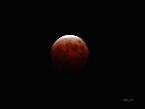 20141008 皆既月食報告8