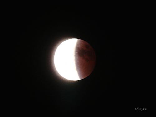 20141008 皆既月食報告14