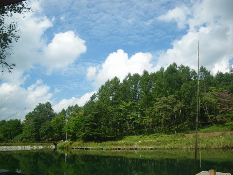 高原の小さな池