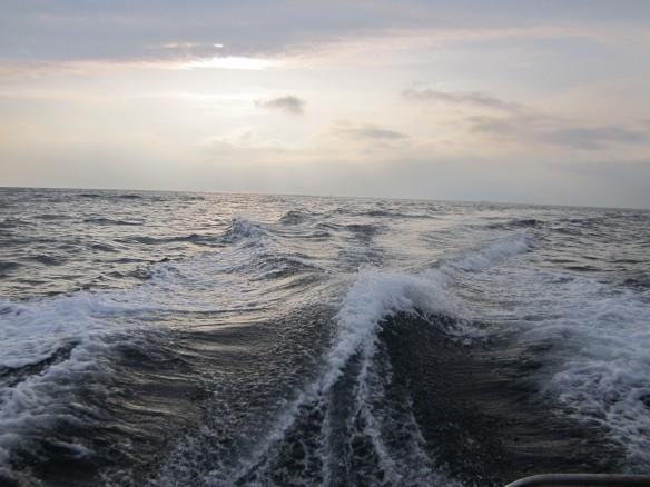 26.10.2タチ魚釣り 042_ks