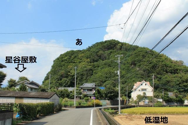 IMG_7710.jpg