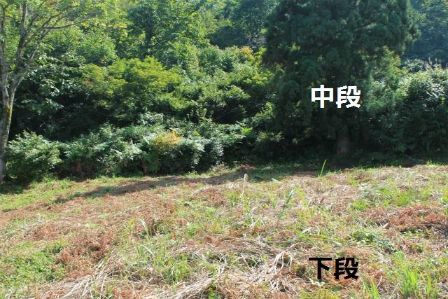 sIMG_7808.jpg