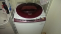 中川区 パナソニック製洗濯機(NAFS80H5)異音修理