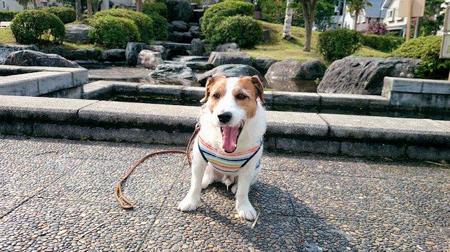 2014散歩058