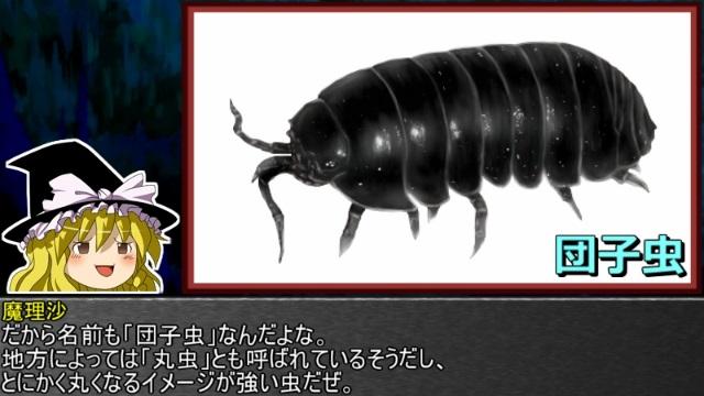 ゆっくり霊夢とやる夫が学ぶ 昆虫大百科 番外編part3