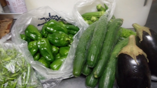 2014-9-9収穫2