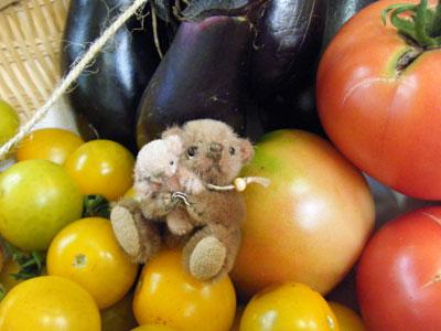 会社で収穫した野菜と一緒にvv