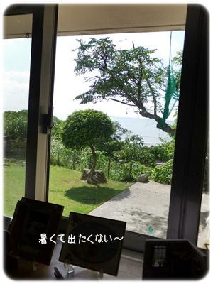 2014_09250009.jpg