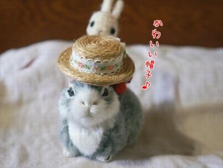 可愛いお帽子3