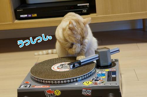 DJみつを