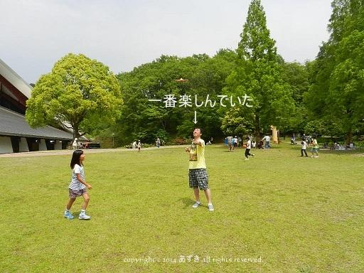 20140530-8.jpg