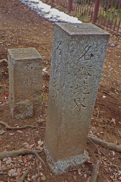 小金井桜 名勝の区切りの碑