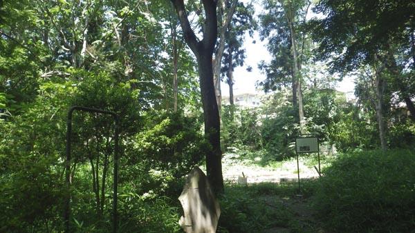 空林荘のあったところ