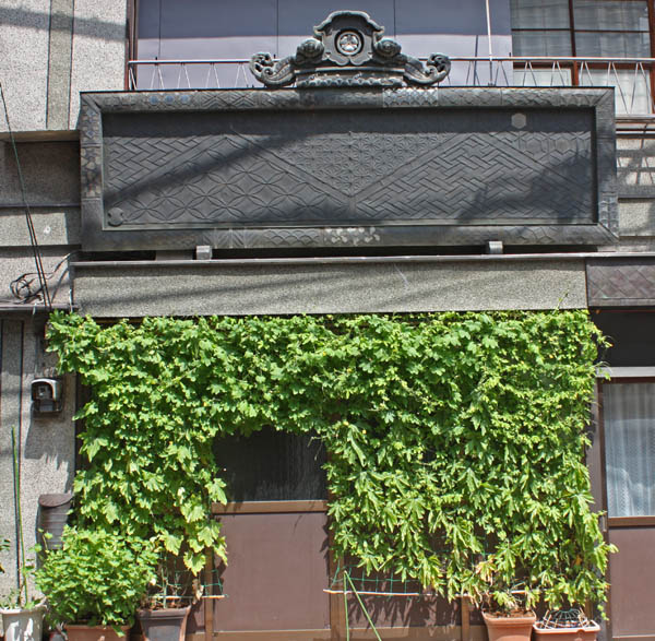 東京 榎町で見た緑のカーテン