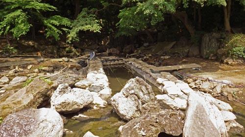 白糸の瀧から大泉水へ