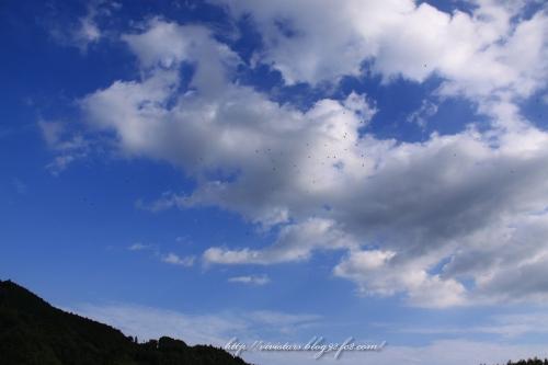 旅立ちの秋201404