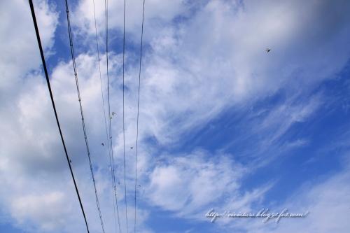 旅立ちの秋201403