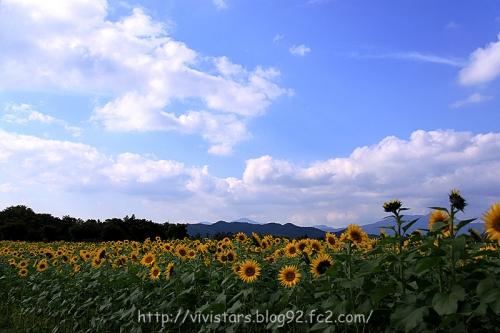 花の都公園秋01