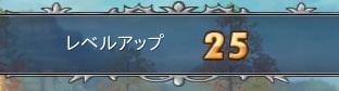 Lv25+.ヾ(。・▽・)ノ゚+.ダー☆