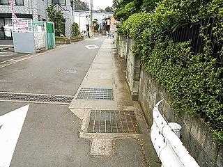 kamisaku524-2.jpg