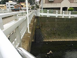 kamisakukouen1.jpg
