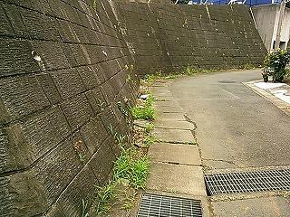 kamisakukouen12.jpg