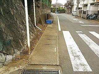 kamisakukouen6.jpg