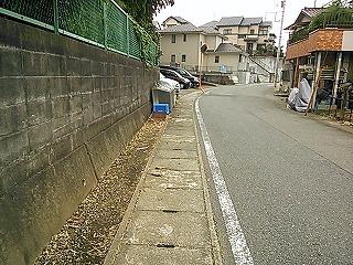 kamisakukouen7.jpg