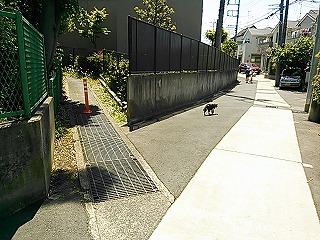 kamisakusho1-11.jpg