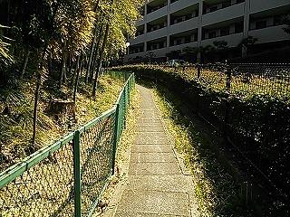 kamisakusho3-3.jpg